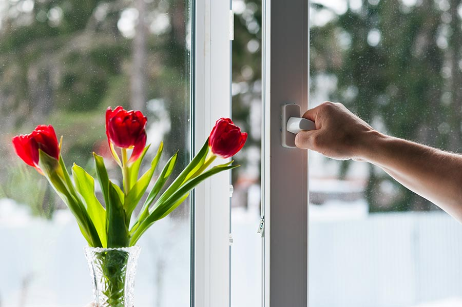 Person's hand opening a window with double glazing and flowers on the window sill